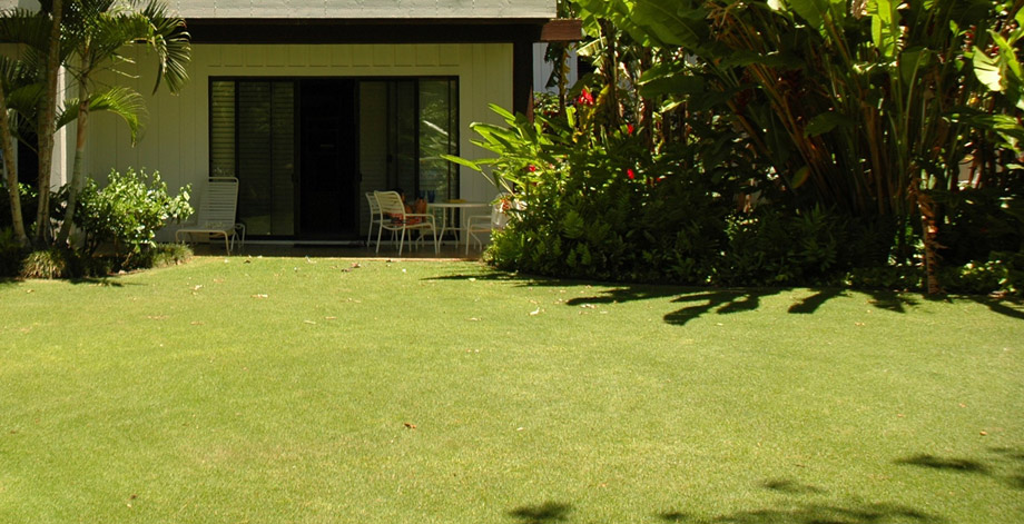 Large lawn is perfect for families with children